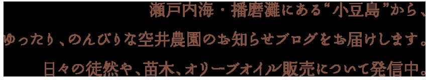 """瀬戸内海・播磨灘にある""""小豆島""""から、ゆったり、のんびりな空井農園のお知らせブログをお届けします。日々の徒然や、苗木、オリーブオイル販売について発信中。"""